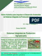 Clase Sistemas Integrales Ppub.