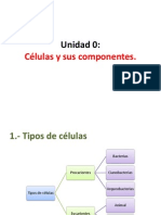 PP1 Tipos de Celulas