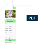 Water hyacinth.docx