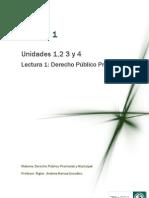 Lectura 1-Derecho publico provincial.pdf