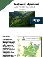 Parcul National Apuseni