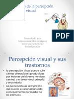 Trastornos de la percepción visual LIZETH