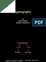 Steganography 111107140802 Phpapp02