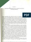 Capítulo 7. Enfoques principales en la ciencia política contemporánea