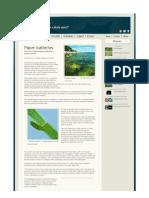 Paper batteries2012.pdf