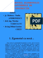Andronescu Tariceanu Chitu - Managementul Zgomotului