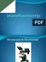 Imunofluorescenta