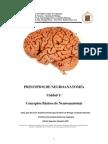 Neuro 2 Importante