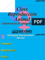 Clase 9 Reproduccion1 PPTminimizer