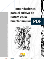 Cartilla Recomencaciones Para El Cultivo de Batata en La Huerta Familiar