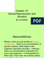 Chapter 10- 1meiosis