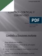Control Cortical