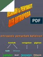 Kelainan & Penyakit Oleh Artropoda
