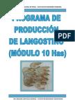 Trabajo Langostino2 (4)