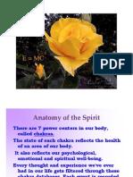 AnatomyoftheSpirit Chakras