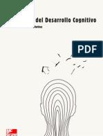 Teorías del desarrollo cognitivo