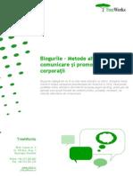 Blogurile Metode Alternative de Comunicare Si Promovare Pentru