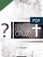 Livro eBook Perguntas e Respostas Desde a Cruz