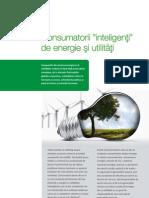 Pasi Esentiali Pentru Companiile de Energie Si Utilitati Care Doresc Sa Isi Fidelizeze Clientii
