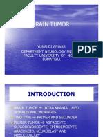 Bms166 Slide Brain Tumor