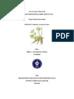 Dhita Anggraini Annisa F34100025_Tugas ASPK komoditi.docx