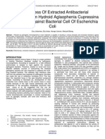 Effectiveness of Extracted Antibacterial Compound From Hydroid Aglaophenia Cupressina Lamoureoux Against Bacterial Cell of Escherichia Coli