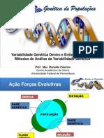 Aula12 Genticadepopulaes Variabilidadegenticadentreoeentrepopulaesemtodosdeanlisedavariabilidadegentica 120531214049 Phpapp01