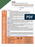 Boletín Semana Epidemiológica 01-2013
