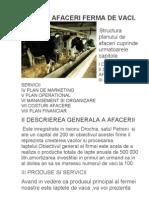 PLAN DE AFACERI FERMA DE VACI.doc
