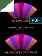 7-Membranes & Transport