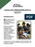 Consulta Prelegislativa Foro Folleto Marzo 2013