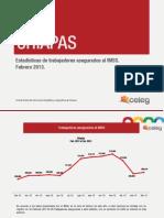 Estadisticas_IMSS_Febrero_2013.pdf