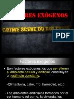 Factores EXO.pptx
