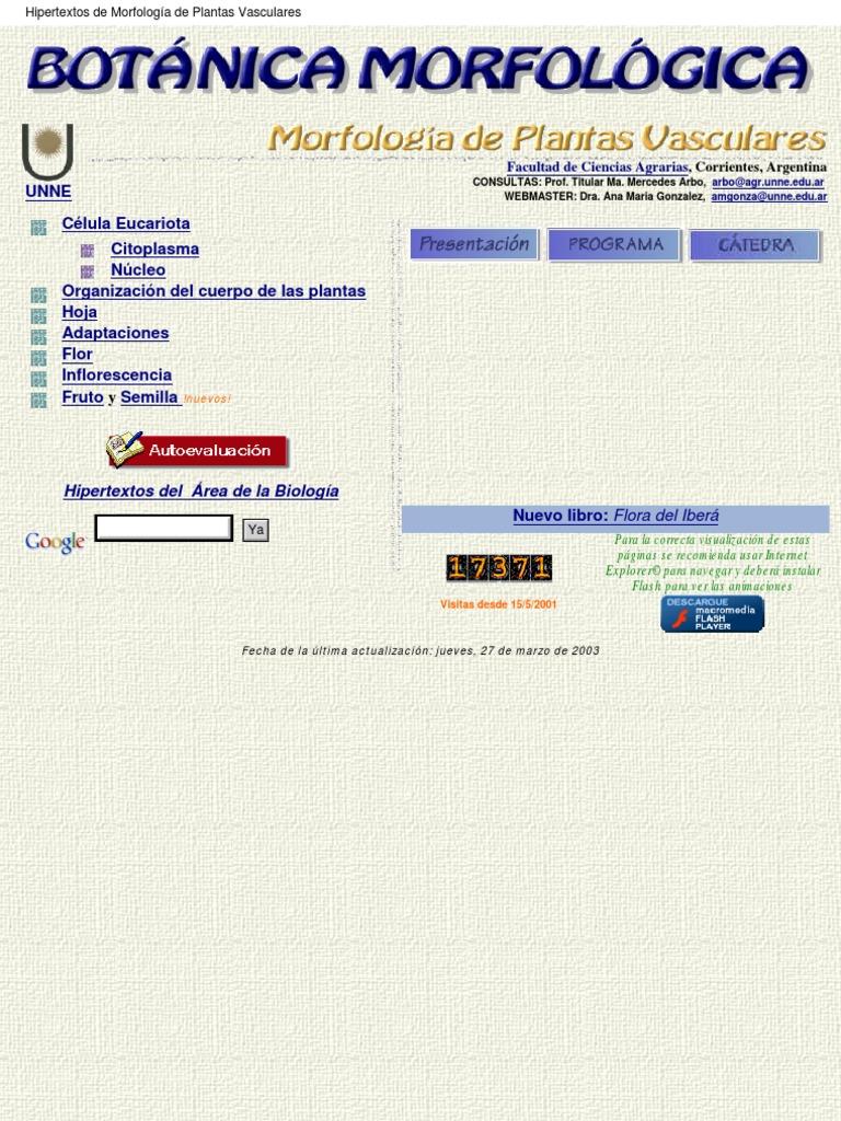 d71107d4e437 Botanica Morfologíca