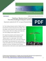 Vital Force Technology- Seedling Growth