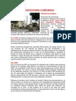 Proyectos Etanol y Caña Brava