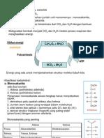 KArbohidrat,lemak & proteinl.ppt