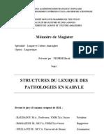 Structures du Lexique des Pathologie en Kabyle - FEDIKHI Razik