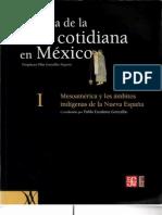 La vida en los orígenes de la civilización mesoamericana.pdf
