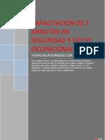 CAPACITACION DE 5 MINUTOS EN SEGURIDAD Y SALUD OCUPACIONAL.docx