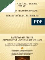Rutas Metabolic as Del Cristal i No