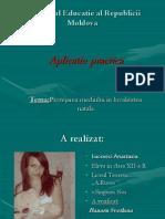Aplicatie Practica Nastea