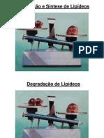 Lipideos2_PSA2012