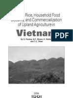 Upland rice in Vietnam