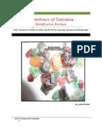 Gemstones of Tanzania by Gilay Shamika