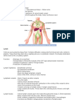 The Lymphatic System Summary