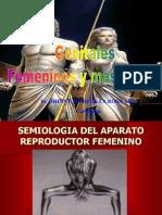 Genitales Masculinos y Femeninos