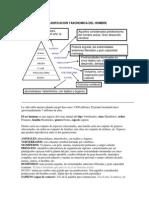 EL HOMBRE EVOLUCION Y CLASIFICACION.pdf
