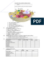 EVALUACION DE CTA  1° celula 2.pdf