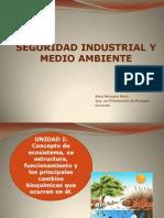Seguridad Industrial y Medio Ambiente 2